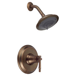 Click here to see Danze D500545RBDT Danze D500545RBDT Distressed Bronze South Sea Pressure Balance Shower Trim