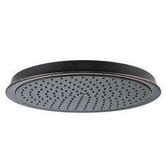 Click here to see Hansgrohe 28427921 Hansgrohe 28427921 Raindance Oil Rubbed Bronze Showerhead