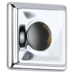 Click here to see Delta RP52144 Delta RP52144 Chrome Dryden Square Shower Flange