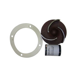Click here to see Red Lion 617314 Red Lion 617314 Major Repair Kit for 5RLGF-8KRF Cast Iron Multi-Purpose Utility Pump