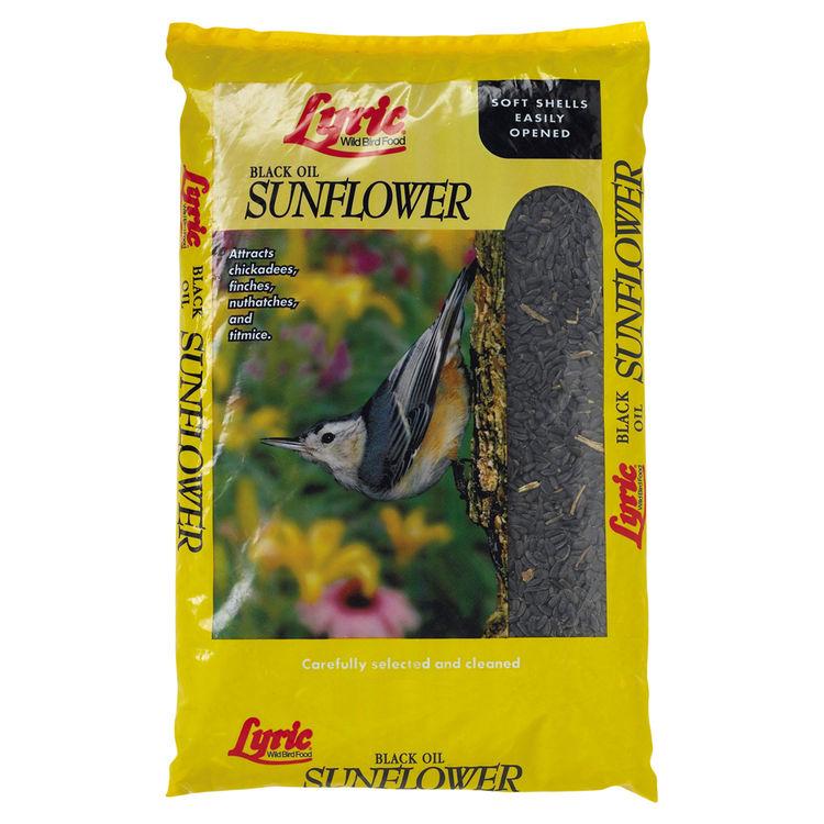 Lebanon 2647280 Lyric 2647280 Sunflower Seed, 50 lb, Bag