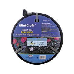 Mintcraft 045734631069
